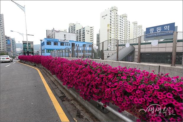 ▲ 꽃꽃한 부천 - 송내역 지하차도