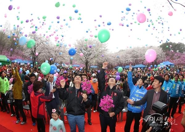 ▲ 지난해 원미산 진달래축제 모습