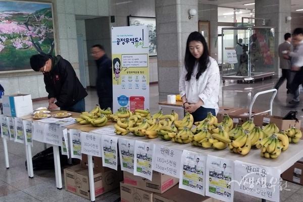▲ 부천시공무원노조가 공정무역바나나를 판매하고 있다