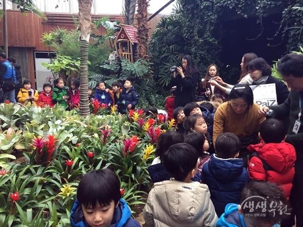 ▲ 지난해 열린 부천식물원 봄꽃전시회