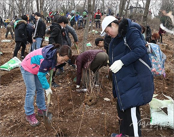 ▲ 2018년 내나무 심기 행사