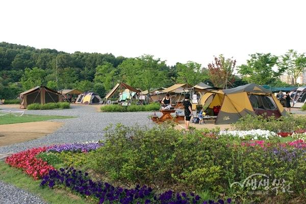 ▲ 여월농업공원 캠핑장