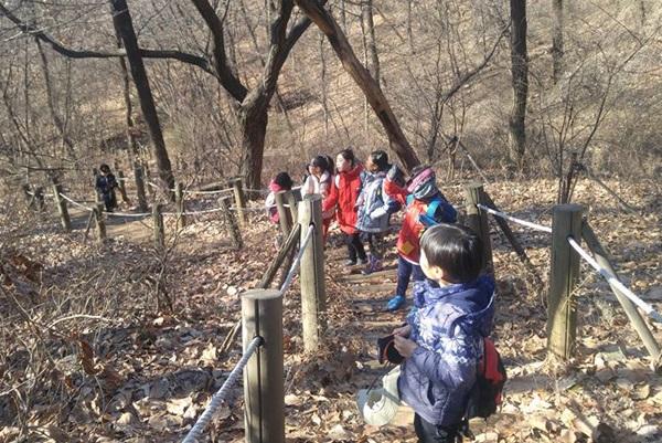 ▲ 그룹별로 부천의 숲에서 이루어지는 '부천 방과 후 숲학교'