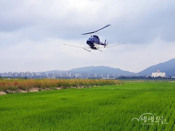 ▲ 헬기를 이용한 벼 병해충 항공방제