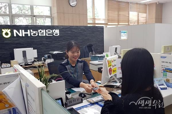 ▲ NH농협은행 11개 지점에서 부천페이카드를 구매(충전)할 수 있다.