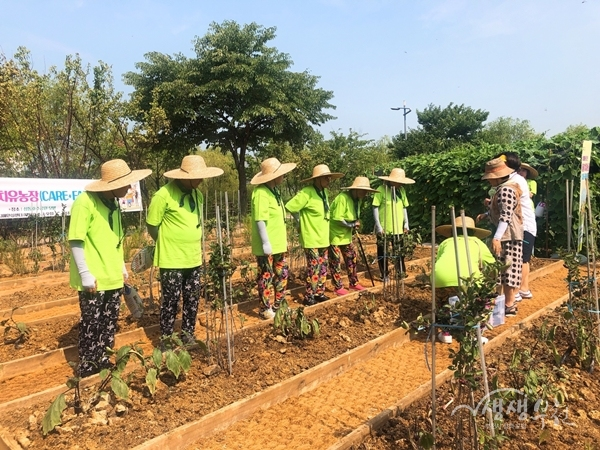 ▲ 치매어르신 돌봄치유농장에서 활동 중인 모습
