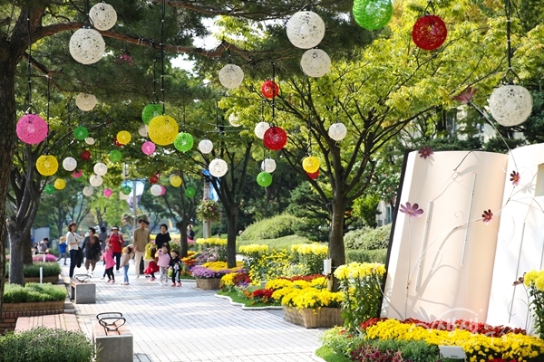 ▲ 부천시청, 중앙공원 일원에서 진행되는 2019 부천 가을꽃 전시 현장