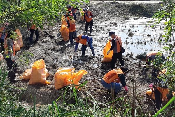 ▲ 강릉 태풍 피해복구에 참여한 부천시통합봉사지원단, 개인봉사자