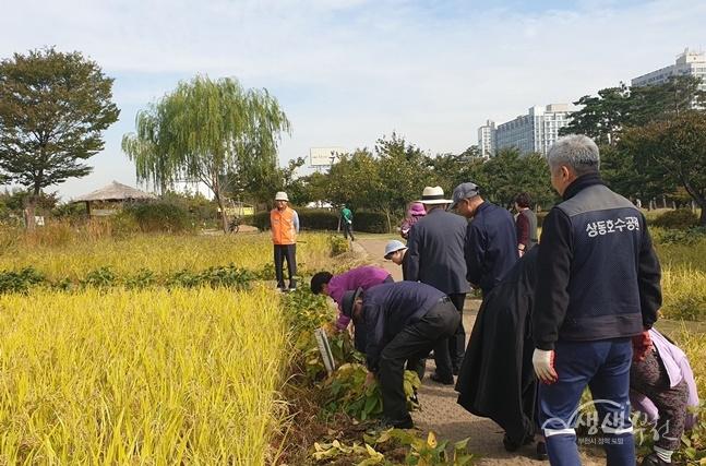 ▲ 부천시 경증치매환자 대상 프로그램 '케이팜' 활동 모습