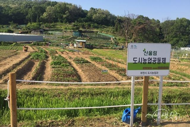 ▲ 춘의동에 위치한 산울림농장 전경