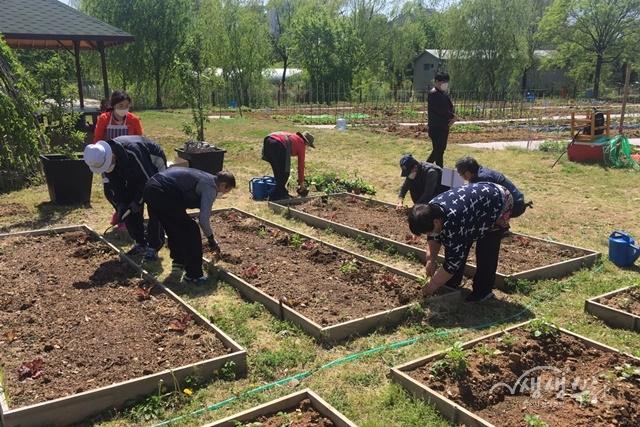 ▲ 부천시가 지역사회 통합돌봄과 사회적 농업을 결합한 케어팜을 운영한다