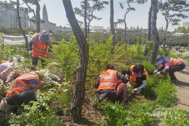 ▲ 지역공동체일자리사업(마을정원만들기사업)에 참여하는 모습