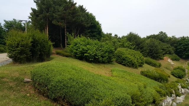 ▲ 범박산 숲길