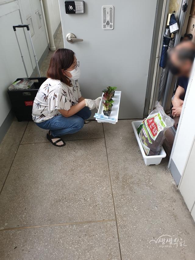▲ 부천동에서 '집콕 텃밭 키트 사업'을 추진하였다.