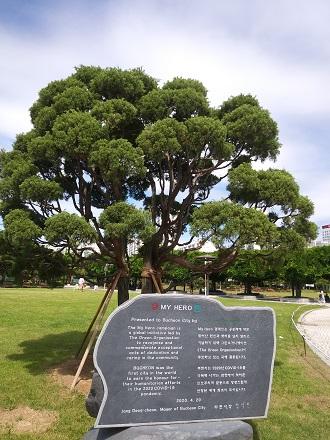 ▲ 중앙공원의 '마이 히어로 기념 나무'와 기념비 모습