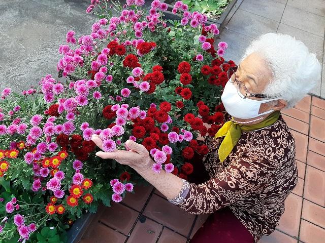 ▲ 경로당앞에 기르는 화사한 꽃을 어루만지는 어르신