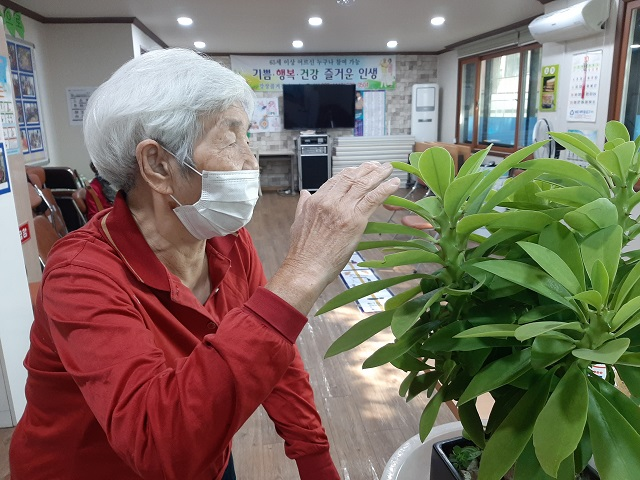 ▲ 녹색식물을 바라보며 마음의 위로가 된다는 어르신