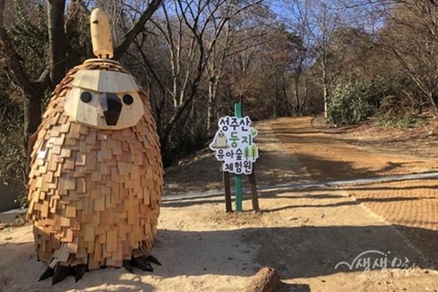 ▲ 성주산 둥지 유아숲 체험원 전경