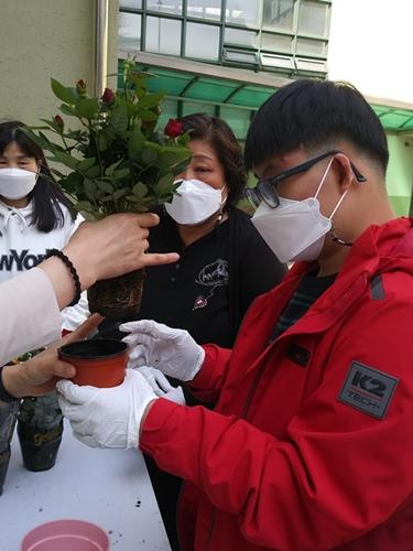 ▲ '우리 집 장미 키우기'에 참가해 장미 화분 분갈이를 하고 있는 참가자 모습
