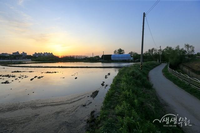 ▲ 마을이음길-고강들판
